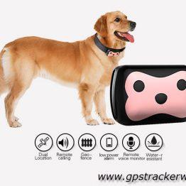 gps tracker animal mini gps track hond kat paard huisdier spatwaterdicht