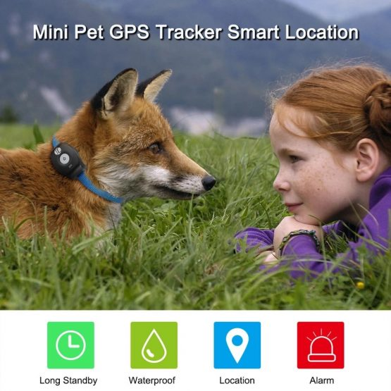 gps tracker animal mini 2 gps track hond kat paard huisdier spatwaterdicht